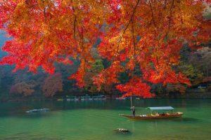 Dự báo lịch ngắm lá đỏ năm 2019 tại 10 điểm đẹp nhất Nhật bản